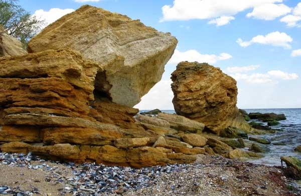 камень ракушечник